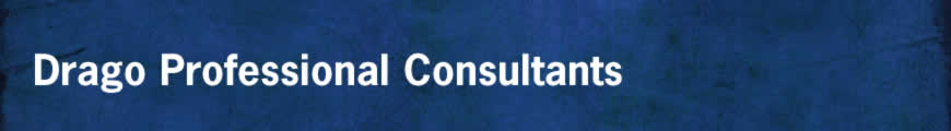 Drago Professional Consultants
